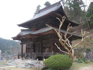 Temple and writhing tree